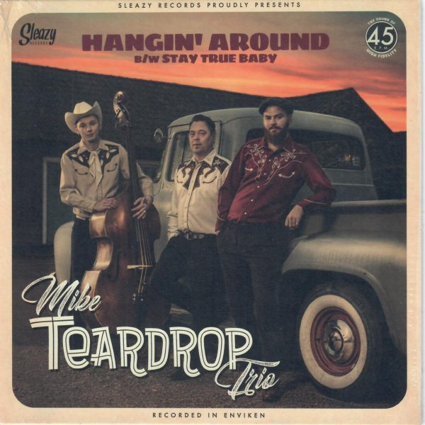 Mike Teardrop Trio Hanging around Front