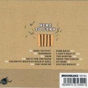 Hoodoo Tones CD Here to stay back